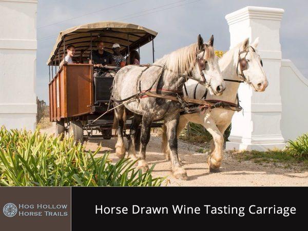Horse Drawn Wine Tasting Carriage