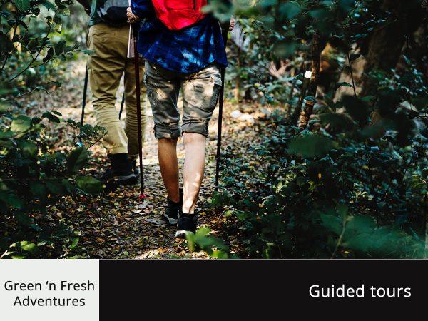 green n fresh guided tours