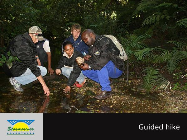 stormsriver adventures guided hike